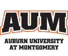 alt - США, Aubern University at Montgomery, Подготовительные программы, 1