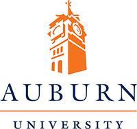 alt - США, Auburn University, Бакалавриат,Магистратура,Подготовительные программы, 9