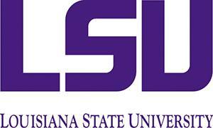 alt - США, Louisiana State University, Бакалавриат,Подготовительные программы, 1